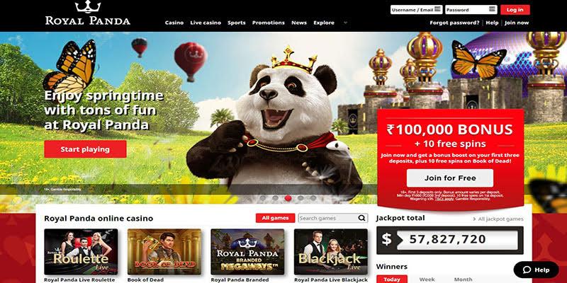 Royal Panda India Homepage Screenshot